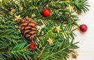 Hurtownie Euro-Trade w okresie świąteczno - noworocznym